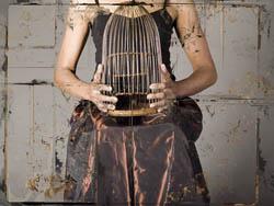 Deborah Dancy, Caged, 2008