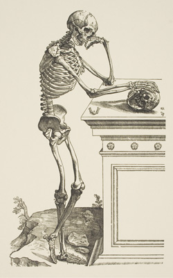 Andreas Vesalius (1514–1564), Skeleton Contemplating a Skull from De Humani Corporis Fabrica, 1543. Lent by the Hartford Medical Society.