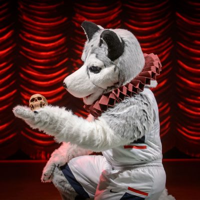 Jonathan the Husky is ready for Shakespeare's First Folio to come to the Benton!