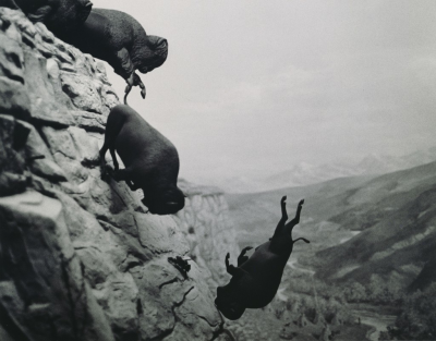 David Wojnarowicz, Untitled (Buffalo), 1988, Platinum Print