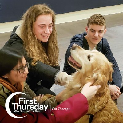 Pet Therapy Dogs visiting with UConn Students