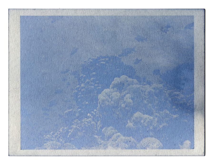 """Fading Reefs 2 (2020) Anthotype made with red cabbage, 4.5"""" x 6""""."""