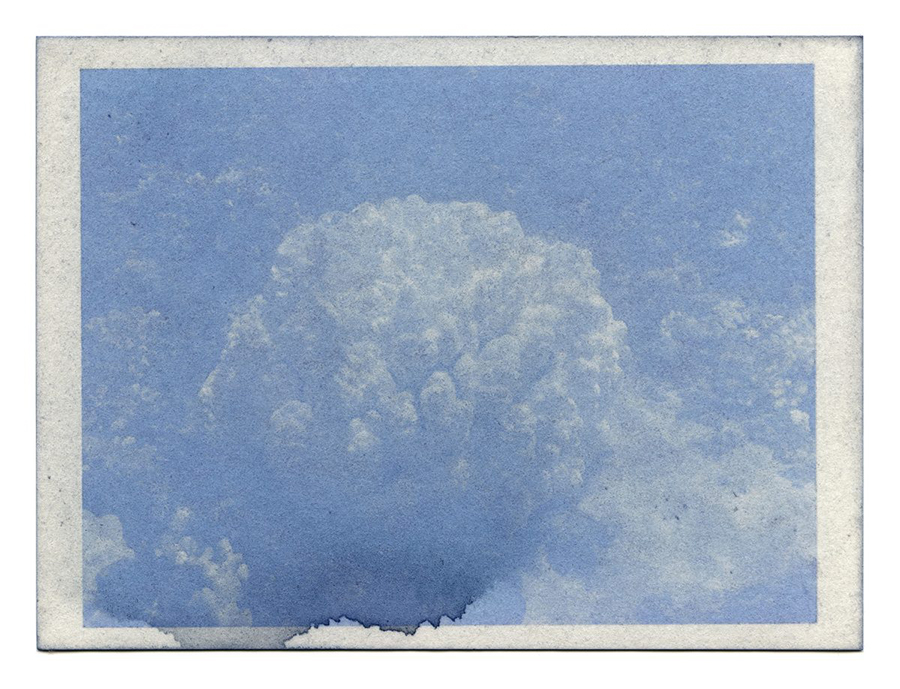 """Fading Reefs 4 (2020) Anthotype made with red cabbage, 4.5"""" x 6""""."""