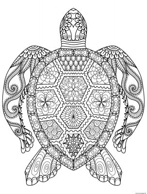 Turtle Zen coloring page