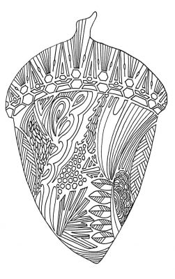 Coloring Page; Acorn