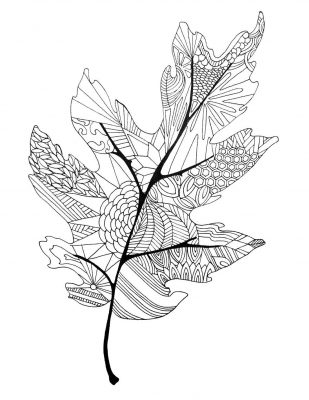 Coloring Page; fall leaf